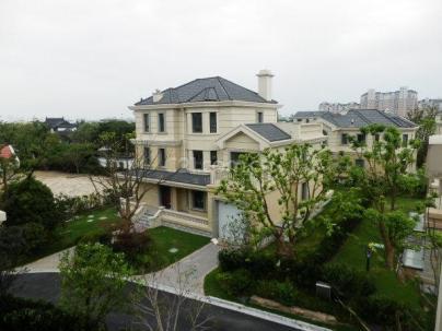 泗泾颐景园二期 5室 3厅 297平米