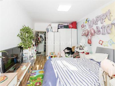 梅市口路11号院 1室 1厅 44.33平米