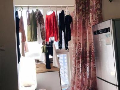 紫宸苑 1室 1厅 54.53平米
