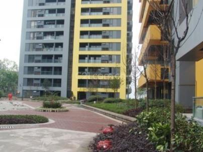 阳光100国际公寓 4室 2厅 309.31平米