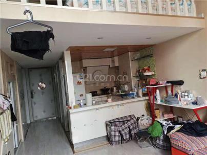 自由筑 1室 1厅 53平米