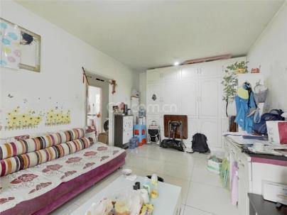 一世情园 1室 1厅 62.71平米