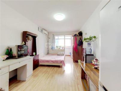 西罗园四区 1室 1厅 44.56平米
