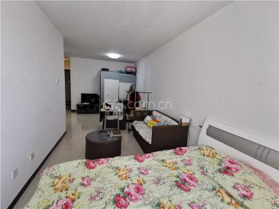 富力尚悦居 1室 1厅 56平米