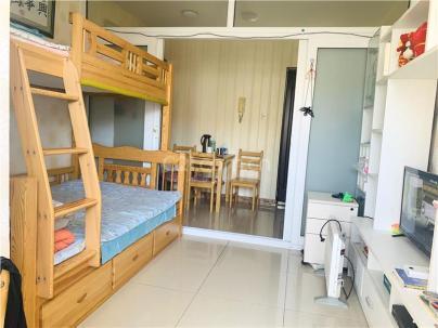 腾龙家园二区 1室 1厅 54.15平米
