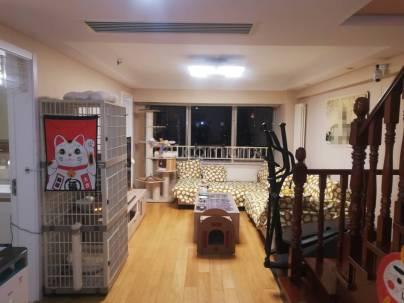 林肯公园(商业) 2室 1厅 56.77平米