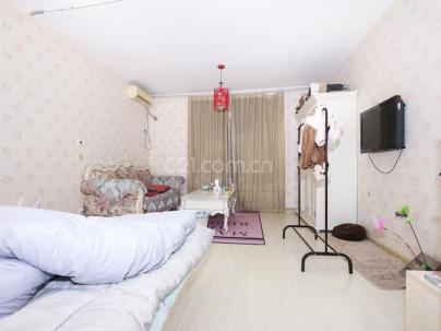 沿海赛洛城(美利山) 1室 1厅 48.96平米