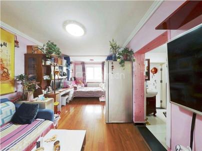 南顶村 2室 1厅 57.9平米