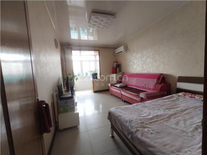 毛纺厂南小区 2室 1厅 54.2平米