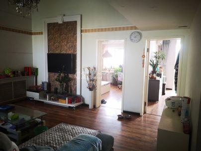 相州A区 2室 2厅 90平米