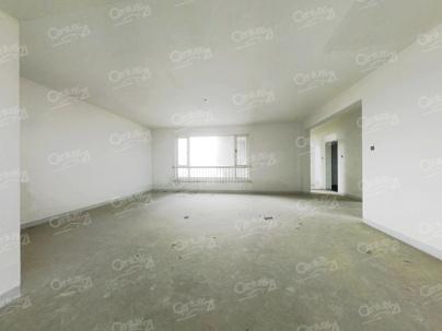 中大长江紫都三期 3室 2厅 149平米