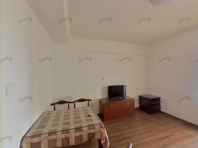 启航城晶彩晶座 1室 1厅 51.77平米